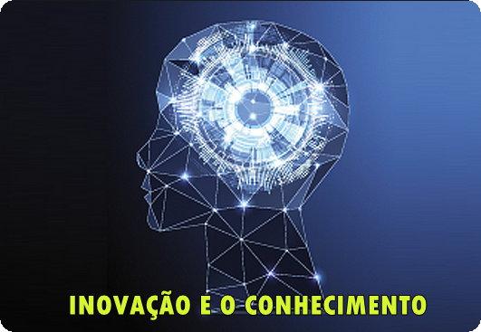 O Aprendizado Organizacional e a Inovação