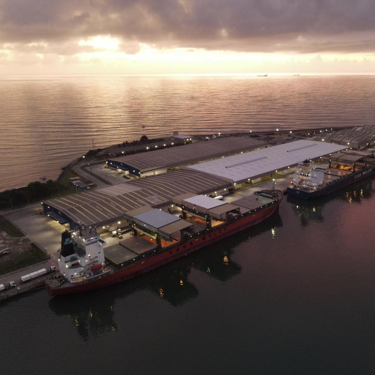 Portocel estabelece recorde mundial no embarque de celulose