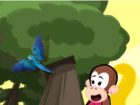 Nossa querida: Arara Azul!