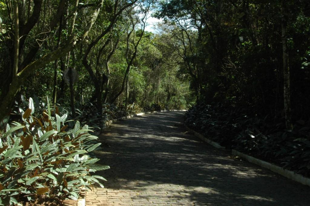 ParqueFonteGrande_CA (7)