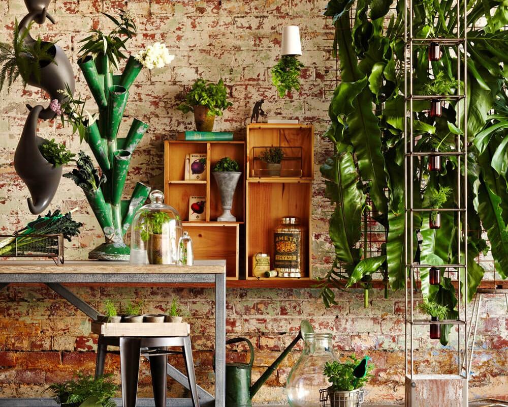 designer de interiores d dicas para ter um jardim de inverno dentro de casa. Black Bedroom Furniture Sets. Home Design Ideas