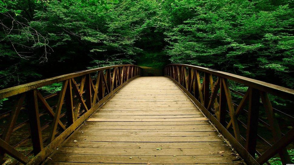 Resultado de imagem para fotos de pontes