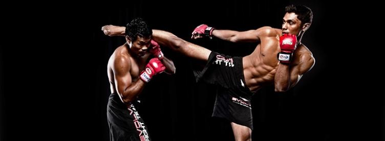 Oportunidade para professores de artes marciais |