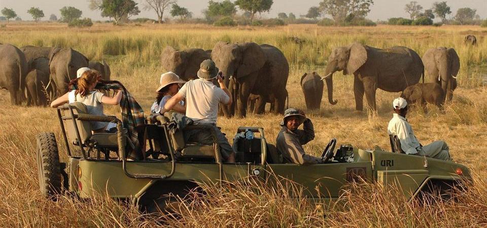 classic-safari