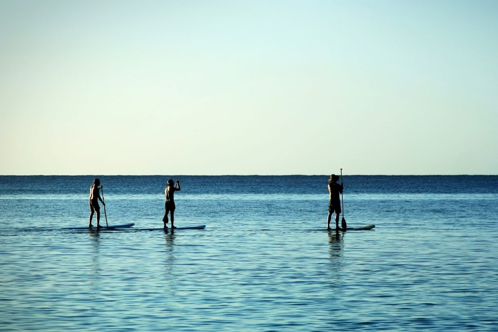 stand up paddle_credito shutterstock