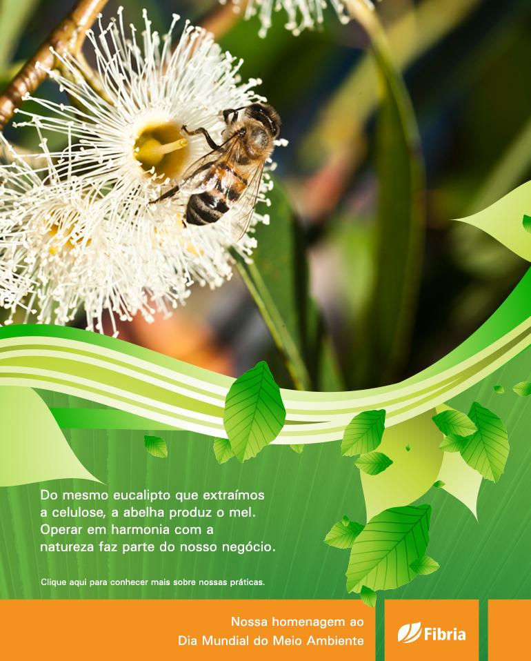 Dia Mundial do Meio Ambiente - Mídia e Mercado