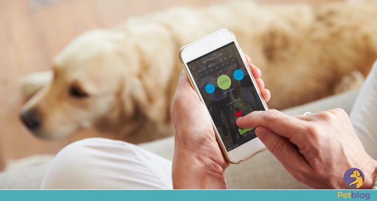 Apps para pets