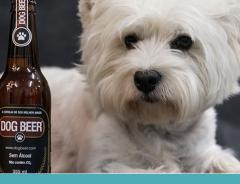 Cerveja e vinho para cachorro