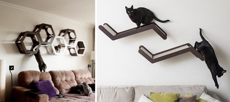 adaptar casa para gato