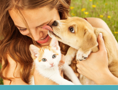 Donos de cães e gatos são muito diferentes?