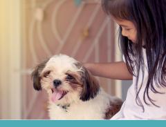 Pets auxiliam na terapia de crianças com síndrome de down