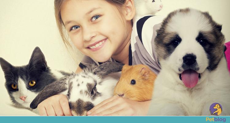 Pets para apartamento - PetBlog